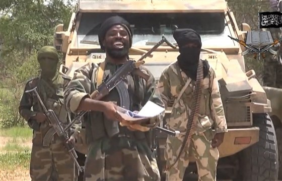 Nigeria, Cameroon troops kill 27 insurgents
