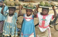 UBEC boss misled Nigerians on number of out-of-school children - Report