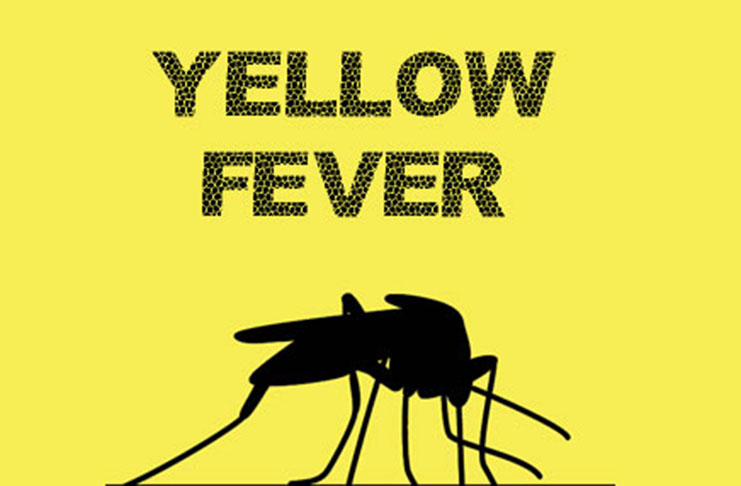 FCT commences Yellow fever immunisation Today