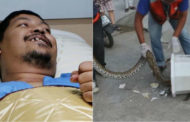 Three-metre toilet snake bites Thai man's penis