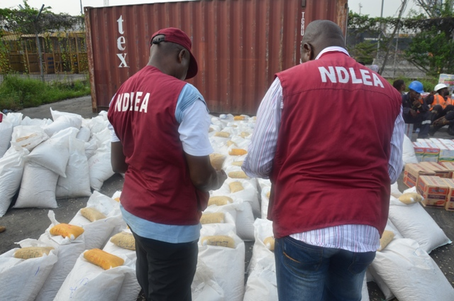 NDLEA impounds 1,031.49 Kg illicit drugs in Adamawa