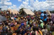 Don't evict 100,000 Nigerian refugees, UN urges Cameroon