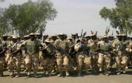 Troops kill 11 insurgents, recover arms