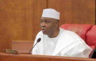 Saraki appoints Prof. Abubakar Suleiman as DG NILDS