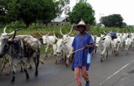 Herdsmen are serious threat to us, Unilorin management cries out