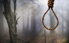 Girl commits suicide 3 months after boyfriend killed self