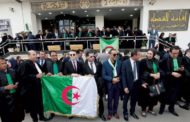 Algerian Security Forces Storm Court to End Judges' Strike