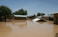 40,000 displaced by floods in Borno – UN