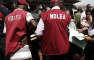 NDLEA seizes 10.5 tons of illicit drugs in Maiduguri